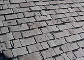 CertainTeed Shingles Defective—that is Certain